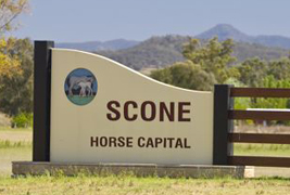 Online Tools help you have your say on Scone's future